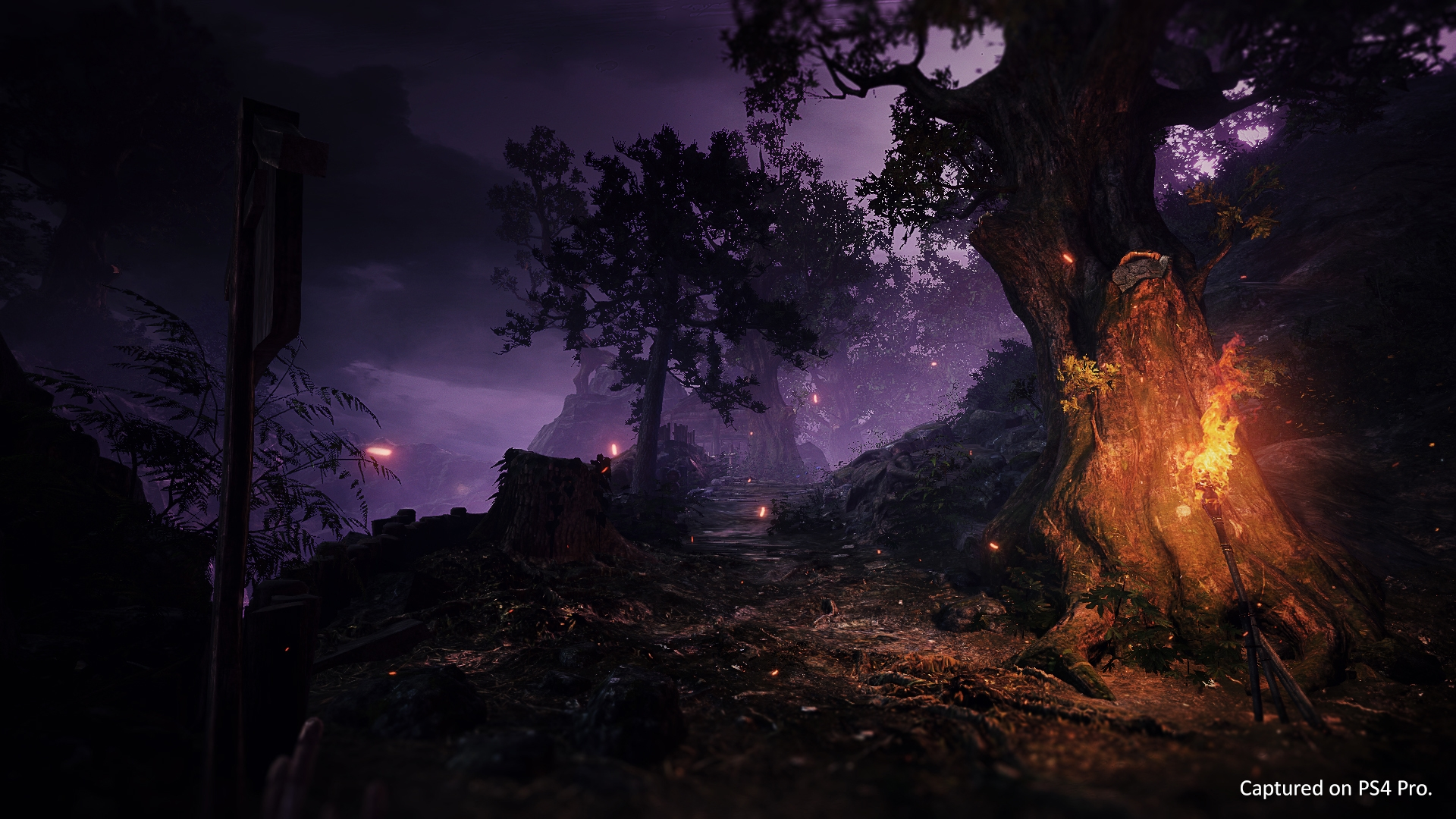 Environment in Nioh 2